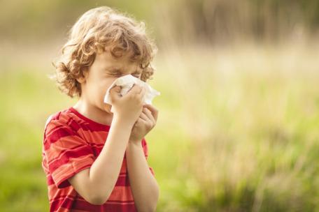 春天想去赏花?先看看自己花粉过不过敏