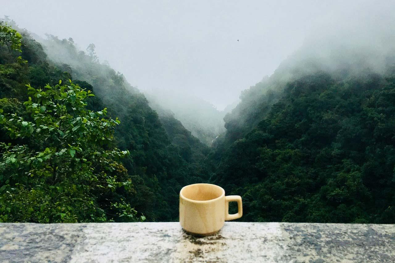 喝茶还是喝咖啡?喝茶比喝咖啡好的10个原因