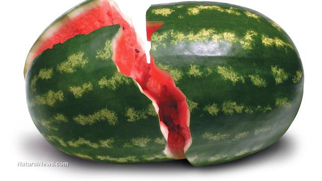 最新研究——西瓜对缓解运动后的肌肉酸痛有奇效!