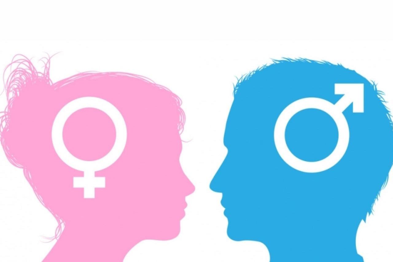 身体的不同,可能只是男女最小的差异!