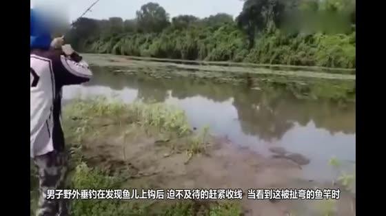 用一整只鸡钓鱼,几个人拼命拉竿,到底是什么鱼?