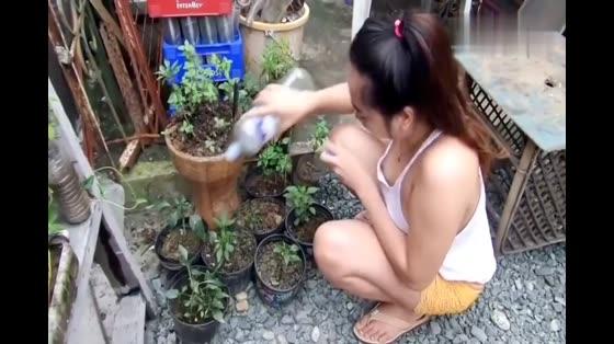 紧张的工作之后回到家里种种花,浇浇水,放松一下