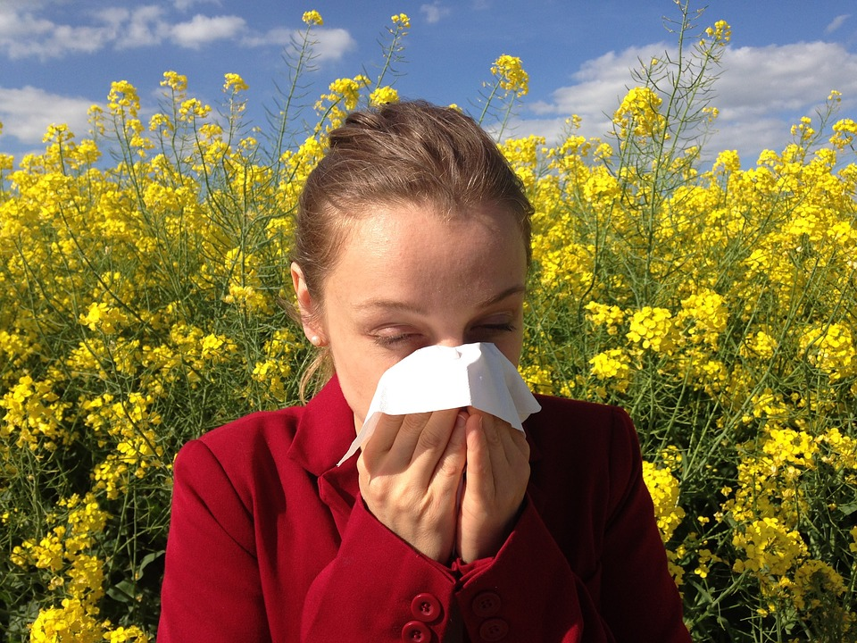 过敏季节:8种强效的过敏救济草药治疗