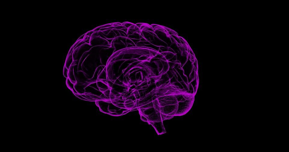 促进大脑健康的5种简便方法