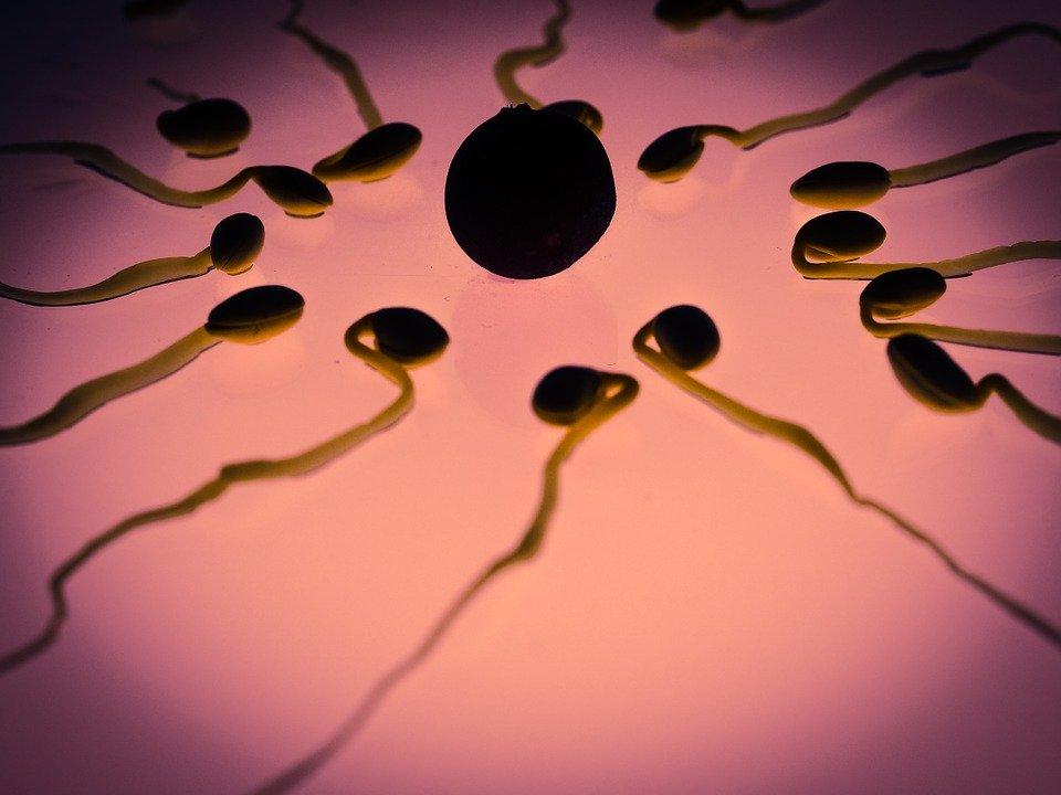 精子实际上对皮肤有益吗?