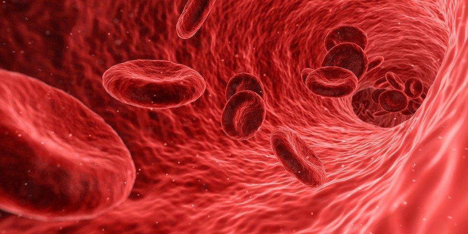 什么是地中海贫血,如何治疗地中海贫血?