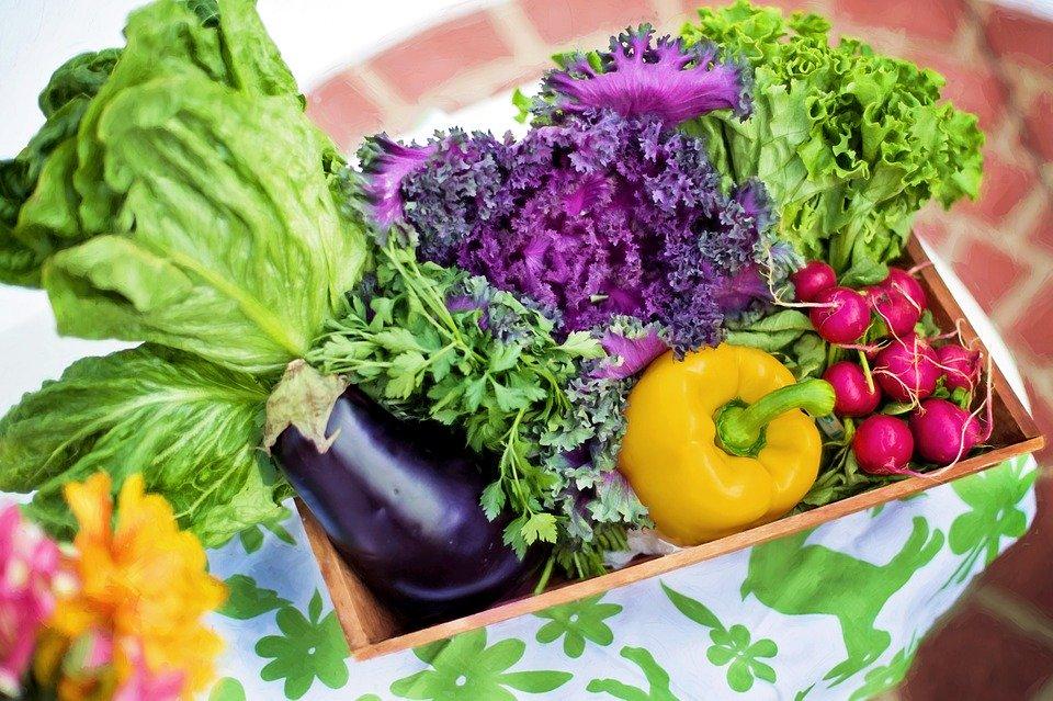 白菜与生菜有什么区别?
