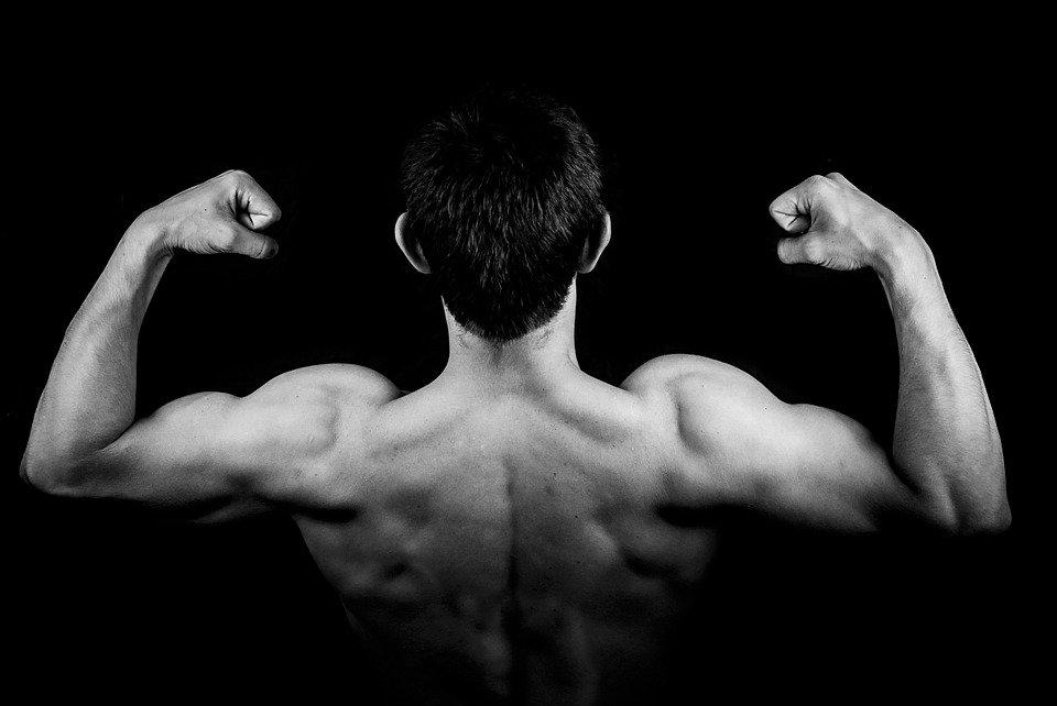 谷氨酰胺会增强肌肉吗?