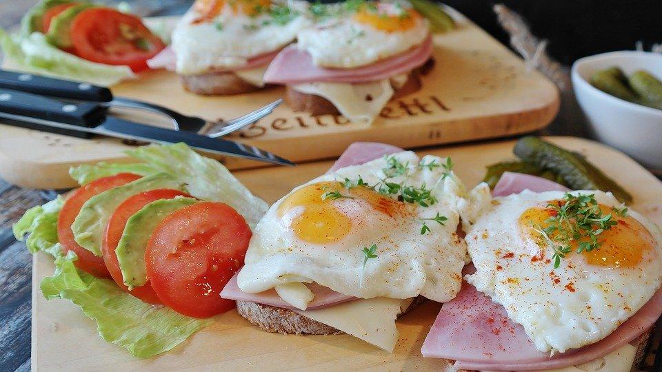 摄入过多蛋白质对您有害吗?