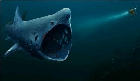 恐怖 画像 深海 症